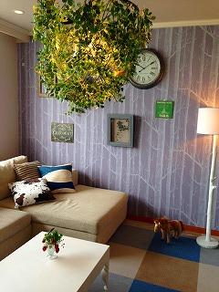 薄紫の壁にチェック柄の床の部屋。天井からは大きなグリーンが吊り下がっている