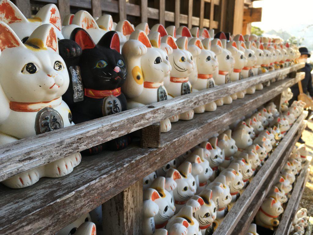 阿南のお松大権現の写真、境内には複数の招き猫がすらりと並んでいる